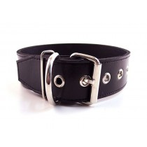 Leather 40mm Plain Collar